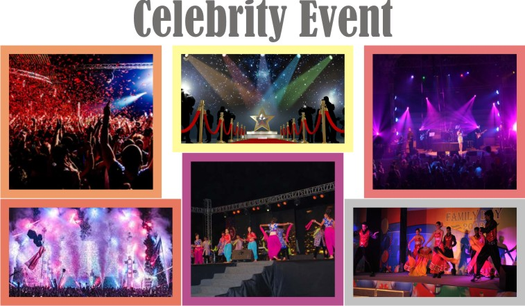 Concert Management,theme parties,event management services for concert